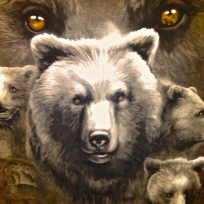 Bear-Eyes