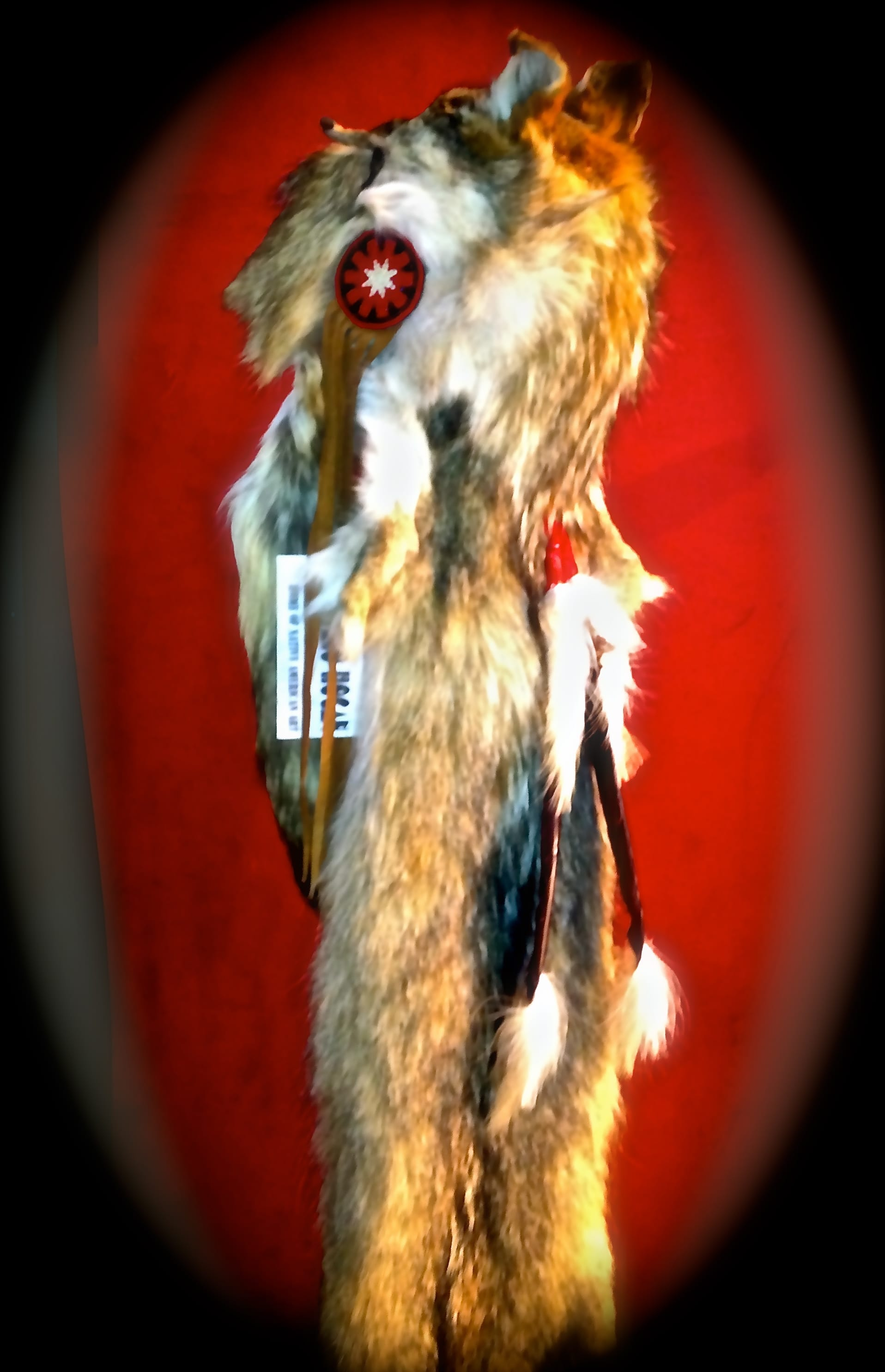 Coyote Medicine Man Headdress Native American World